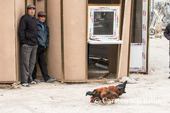 Khiva market - hide and seek and chickens? (10b travelling) Tags: 10btravelling 2015 asia asien carstentenbrink centralasia dishonqala genericplaces iptcbasic ichonqala khiva otherkeywords polvondarvoza silkroad sovietunion ussr uzbek uzbekistan xiva east gate market tenbrink thestans
