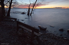 Alone (Massimo_Discepoli) Tags: water trees longexposure sunset mood light umbria trasimeno italy