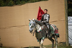IMG_4736 (joyannmadd) Tags: renaissance hammond louisiana festival jousting birds prey celtic queens kings laren fest juggler washing well wenches wiskey bay rovers music midevil combat horse war fight armour joust dual knives knight shining run outdoor competition