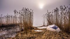 Misty sunrise (Jens Haggren) Tags: olympus em1 sea seascape seaside water reed boat bridge jetty mist fog sun sunrise morning landscape jenshaggren nacka sweden