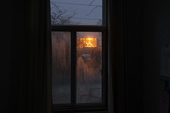 Dark Days 2/3 (francois ollivier) Tags: francoisollivier montreal mtl mileend light winter november orange poetry quebec canada sunset bright darkness emo subtil architecture design modern art photo if you leave