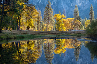 River Bend Reflections
