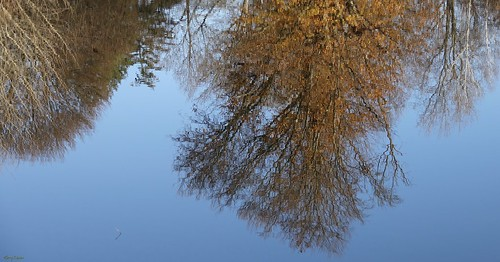"""Water Reflection • <a style=""""font-size:0.8em;"""" href=""""http://www.flickr.com/photos/52364684@N03/31060276872/"""" target=""""_blank"""">View on Flickr</a>"""