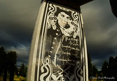 Panel (che2525) Tags: hendrix jimmy memorial grave site purple haze little wing rock roll