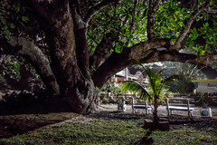 Orchidea Beach II, Sambava (Songkran) Tags: sonydscrx100