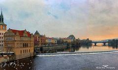 Prag (john_berg5) Tags: prag tschechien moldau golden sky light city sunset nikon d750