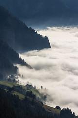 Nebelmeer (oliver.schmitter) Tags: schwyz switzerland schweiz mountains berge rotstock rigi nebel nebelmeer mist fog grau sonnenlicht
