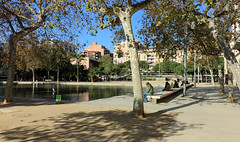Novembre_0012 (Joanbrebo) Tags: canoneos80d efs1018mmf4556isstm eosd autofocus barcelona guinardo jard jardn park parque parc gent gente people streetscenes cityscape lunaphoto