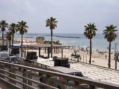 Playa Frishman, Tel Aviv, Israel (Edgardo W. Olivera) Tags: panasonic lumix gh3 edgardoolivera microfourthirds israel mediooriente orienteprximo middleeast microcuatrotercios telaviv playa beach mediterrneo sea mar palmera verano summer