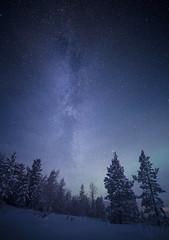 milkyway (deetay26) Tags: milkyway stars night astro galaxy magic fairytale wild forrest winter cold norway north pasvik skrøytnes nikon d610