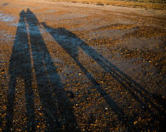 Coming to the light 54/365 (Cath Pentukhoff) Tags: canon 6d beach shadows dog lady man together sunrise