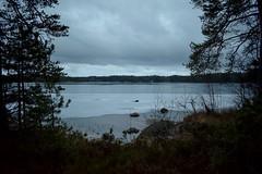 DSC_4132 (Unknown Explorer from Finland) Tags: kirkkonummi kirkkonummimeiko luonto luontokuva suomi finland