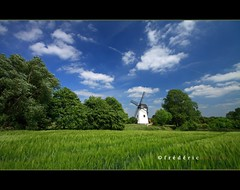 Windmill - Moulin Gustot  Opprebais (lathuy) Tags: blue white green windmill field canon moulin vent europe  belgium belgique wheat champs vert bleu crop nuages brabant couds cpl windmolen wallon wallonie bl sigma1020 incourt gustot opprbais sartrisbart