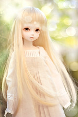 hush'd heav'n (rainwaltz) Tags: nikon may bjd abjd ws tf bluefairy songofsongs beautywhite tinyfairy d3s