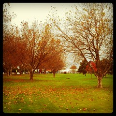 Autumn (vanari) Tags: square squareformat hefe iphoneography instagramapp uploaded:by=instagram