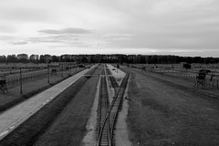 Railway Line (thoughtbottler) Tags: holocaust auschwitz birkenau concentrationcamp shoah auschwitzbirkenau exterminationcamp thoughtbottler