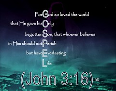 John 3:16 nlt (snapnpiks) Tags: life love church true rock stone easter born high truth heaven king christ god spirit brother father ghost religion jesus lord christian mount holy moses again olives lamb bible alive commandments messiah risen salvation abba sanctuary prayers tabernacle nations sabbath blessed redeemer almighty sins scriptures passover faithful everlasting slain forgive baptised crucified preist apostle forgiven deciples reserection strongtower
