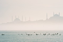 the Bosporus (williwieberg) Tags: fog turkey istanbul bluemosque hagiasophia bosporus d4 180mmf28ais