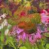 Coneflower Fun (Karen McQuilkin) Tags: summer abstract garden july coneflower theawardtree karenandmc coneflowerfun gardenlayersofownimages