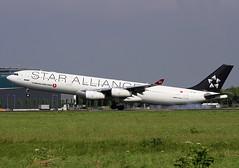 TC-JDL (Kok Vermeulen) Tags: airbus schiphol eham staralliance a340300 36r turkishairlines tcjdl rwy36r