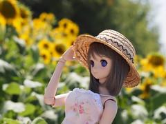 P8160257 (Yukikaze_b1) Tags: 06 dollfiedream 雪子 観光農園花ひろば