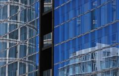 MeieReieM (Scilla sinensis) Tags: plaza coffee architecture hamburg reflexion meier reflektion fotosondag fs131006