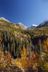 San Juan Mountains (jonesslinger) Tags: fall leaves colorado silverton aspens durango sanjuanmountains milliondollarhighway hwy550