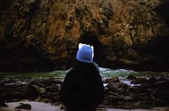 California Roadtrip (Joice Gonzalez.) Tags: ocean california film beach nature 35mm nikon bigsur roadtrip californiaroadtrip pfeifferstatepark kodakportra