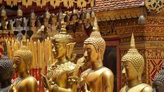 Golden | Chiang Mai, Thailand (tmanjing) Tags: thailand temple gold golden chiangmai budha wat budhism suthep