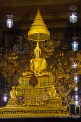 The Golden Buddha (Sound Quality) Tags: light sculpture art tourism yellow statue canon thailand temple gold golden design mural shrine asia bangkok buddha religion culture buddhism meditation enlightenment watpho goldenbuddha spirit7628yahoocom httpwwwtumblrcomblogsoundquality httpwwwflickrcomphotosmichaelwashingtonphotography