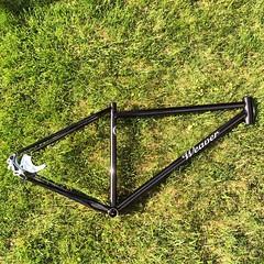 Single speed 29er. #weavercycleworks #custombicycles #steelisreal #singlespeed