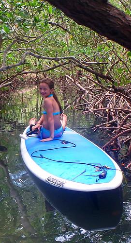 5-17-15 JackDee_Terry & Co Paddleboard Tour Sarasota  (5)
