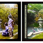TWO DUCKS KEEPING AN EYE ON A COUPLE OF MAIKO in OLD JAPAN -- A Study of Words & Color thumbnail