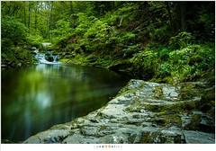 Valle de la Hogne (nandOOnline) Tags: water ardennen belgi natuur lee luik tse landschap rotsen hogevenen rivier natuurgebied regenwater hoegne hockai belgi bigstopper lahoegne valleedelahoegne beeksmeltwater