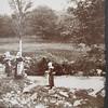 Photograhie de portrait en Bretagne 1840-1940 (bibquimperle3) Tags: de photo photographie image gray exposition le ambrotype visite carte calotype quimperlé colelction cocopaq daggueréotype