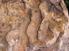 Asymmetrical ripple marks in quartzite (Baraboo Quartzite, upper Paleoproterozoic, ~1.7 Ga; southern shore of Devil's Lake, Devil's Lake State Park, Wisconsin, USA) 3 (James St. John) Tags: park lake wisconsin state ripple south devils marks ranges ripples range asymmetrical quartzite baraboo precambrian paleoproterozoic proterozoic