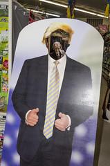 Trump (Zombie), Lawrence, KS (Simon Kossoff) Tags: trump