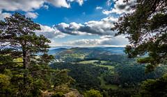 Puy de Chteauneuf (CyrilRly) Tags: montagne puy de dmes auvergne mont dore sancy saint nectaire paysage landscape randonne autumn white sky tree trees