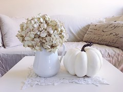 enjoying the long weekend. Happy Monday (life stories photography) Tags: instagramapp square squareformat iphoneography uploaded:by=instagram 2016 october fall autumn pumpkin hydrangea white beige home livingroom iphone stilllife cream