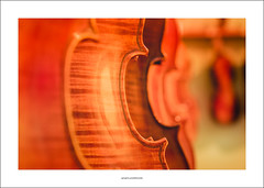 A rack of fine instruments (Descended from Ding the Devil) Tags: dof sonya7mkii sonyalphadslr staffordshire timtoft beyondbokeh bokeh cellos depthoffield fullframe instruments mirrorless photoborder selectivefocus strings violins
