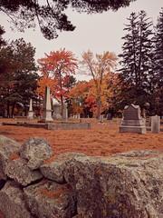 a new england boneyard, autumnal and eternal (citizensunshine) Tags: nh newhampshire graveyard boneyard grave graves tombstone tombstones cenotaph memorial pillar wall tree trees necropolis manchester autumn fall
