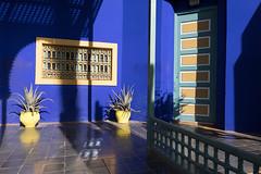 Marrakech - Light and shadow in the Jardin Majorelle (Stefan Napierala) Tags: marrakesch marrakech marokko marocco morocco jardinmajorelle majorellegarden maghreb majorelleblue stefannapierala lightandshadow yvessaintlaurent artnouveau jacquesmajorelle islamicartmuseumofmarrakech pierreberg bleumajorelle marrakesh