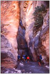 Narrow Enough? 1976 (Fogle Images) Tags: portrait landscape canyonwalking eastforkvirginriver thenarrows zionnationalpark coloradoplateau utah