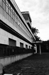Linhas abandonadas (Gabriel Ruggio) Tags: filme film ilford pb blackandwhite abandonado nikkormat ft2 50mm