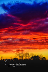 Afterglow (Jim Liestman) Tags: trees home sky afterglow sunset clouds
