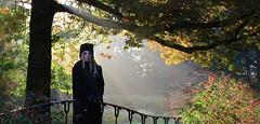 IMG_8793_Fotor02 (Ela's Zeichnungen und Fotografie) Tags: hannover stadtpark landschaft natur herbst laub blätter baum brücke person frau sonne sonnenlicht sonnenstrahlen lichtefekt