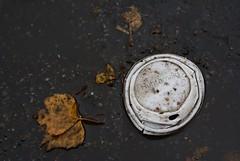Die Bume machen es doch auch... (jakobdettner1) Tags: street waste trash coffee pollution verschmutzung herbst autumn fall berlin schneberg pentacon 50 m42