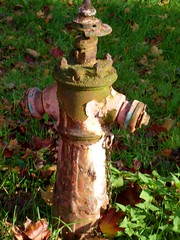Hydrant ( Percy Germany  ) Tags: hydrant wasserspender verrosteterhydrant hydrantpegau pegauerhydrant percygermany feuerwehrpegau feuerwehr pegauerfeuerwehr 30102016