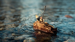 Stumbling Block (macrobernd) Tags: river fluss tiefenschärfe depthoffield blau blue herbst autumn fall blatt leaf stein stone wasser water creeck bach widerstand