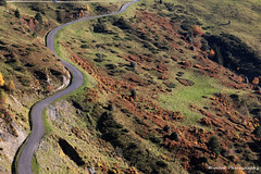 MG - LOURON-4060 (Ma' Moune) Tags: route zigzag col pyrnes aspin louron montagne automne prairie
